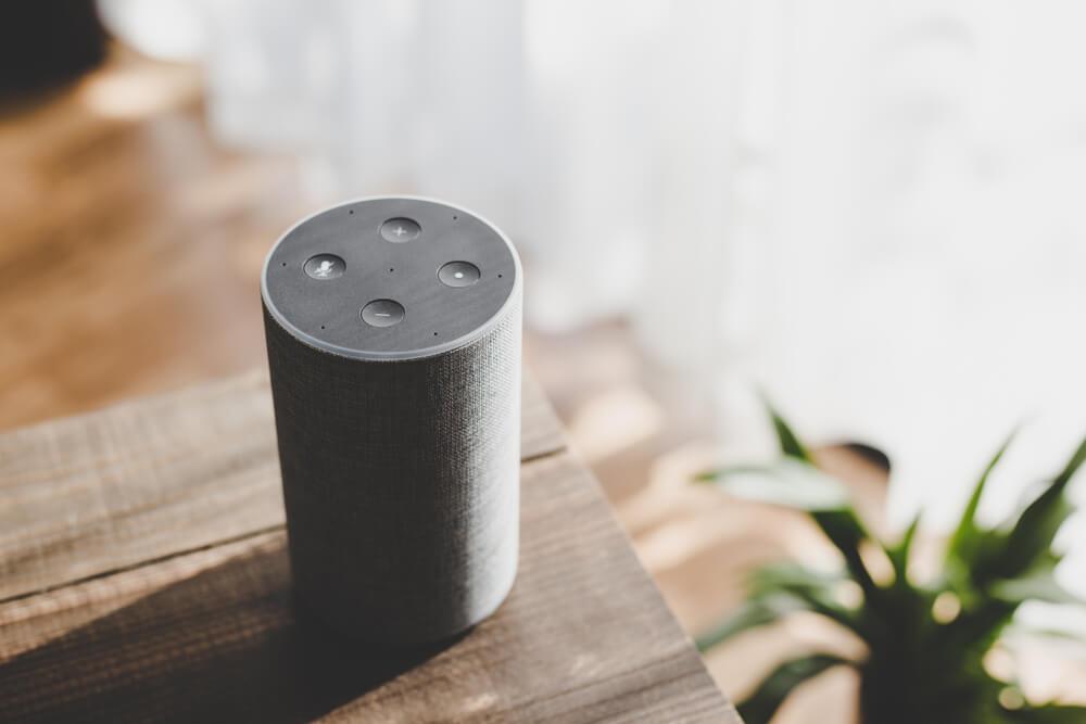 Speaker | Smart Speaker Advertising | Bulldog Marketing